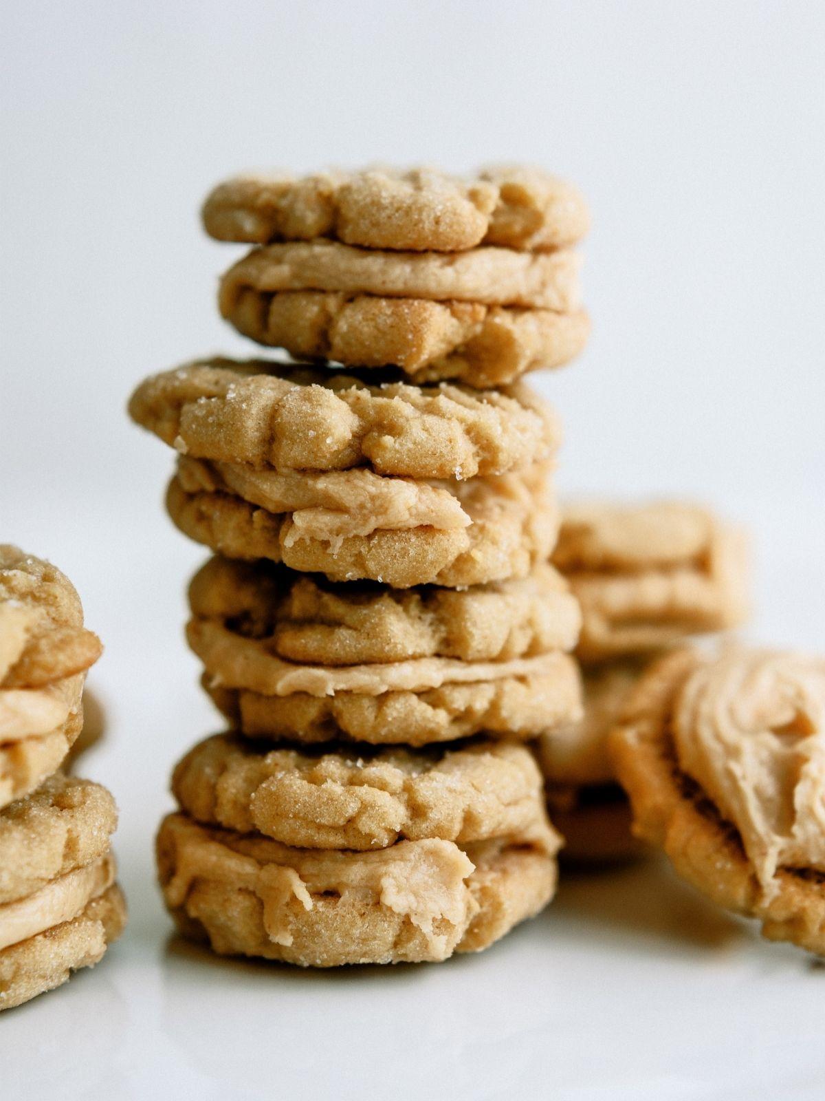 Homemade Nutter Butter Cookies Recipe