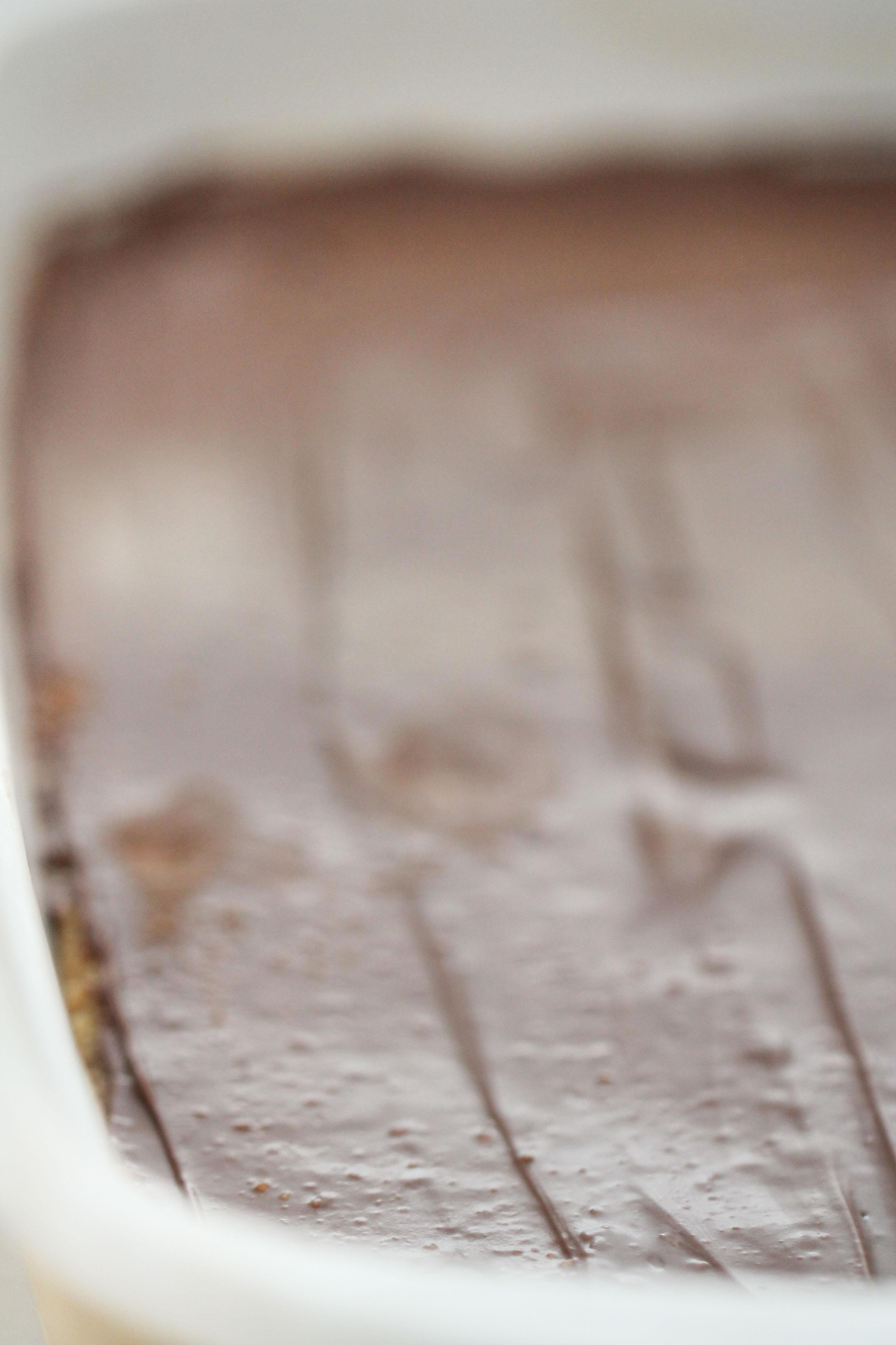 pan of no bake peanut butter bars