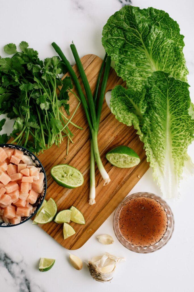 ingredients: chicken, limes, red wine vinegar, salt, pepper, sugar, garlic, cilantro, green onions