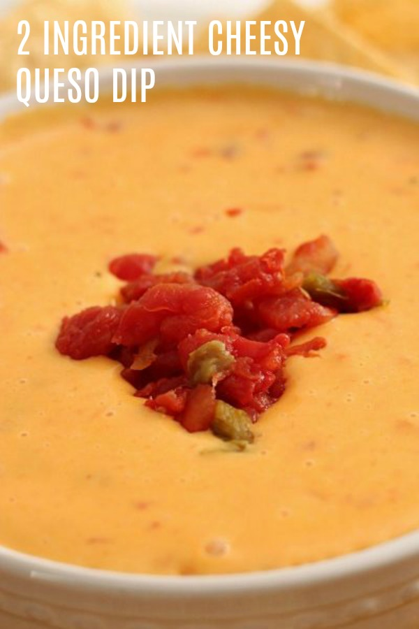 easy queso dip made with just 2 ingredients