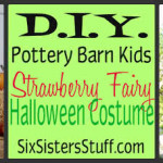 Pottery+Barn+Kids+Strawberry+Fairy+Costume[1]