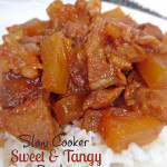 Slow+Cooker+Sweet+and+Tangy+Pork[1]