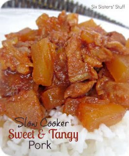 Slow Cooker Sweet and Tangy Pork Recipe