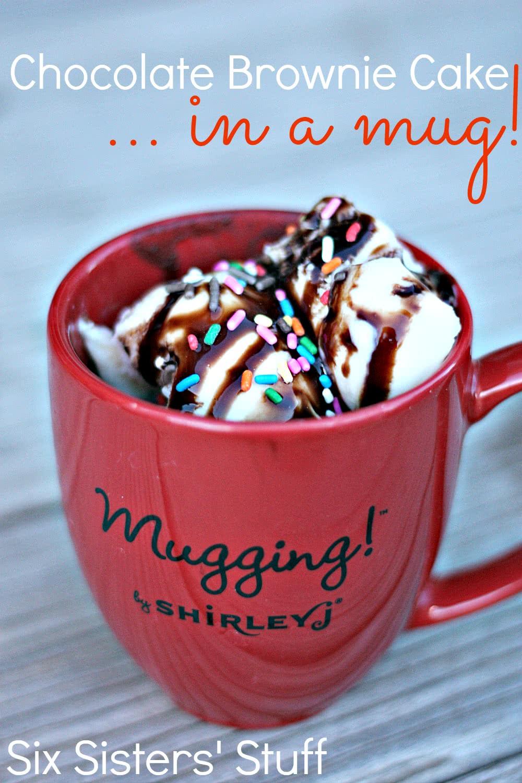 Chocolate Brownie Cake in a Mug (plus a HUGE ShirleyJ giveaway!)