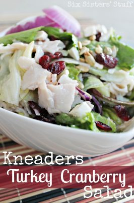 Kneaders Turkey Cranberry Salad