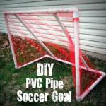 PVC+Goal+2[1]