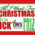 Pick Your Prize Christmas Giveaway! (Camera, iPad, Mixer- whatever you want!)
