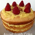 Angel+Lush+Cake[1]