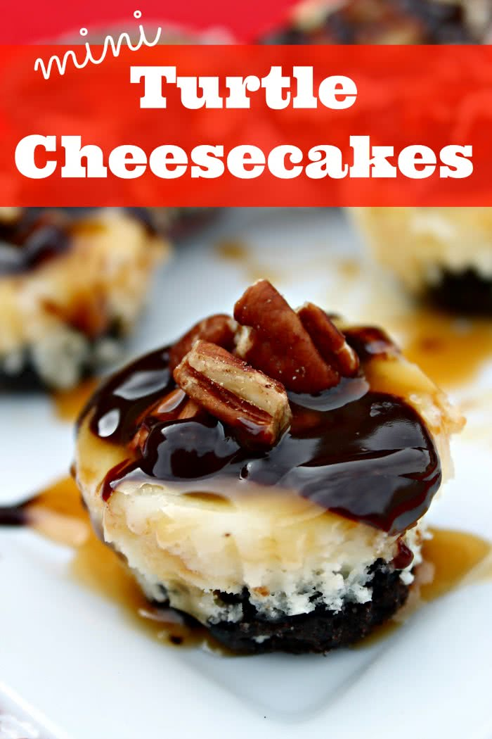 mini-turtle-cheesecakes-700x10501