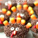 Thanksgiving-Turkey-Cupcakes-Recipe