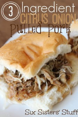 3 Ingredient Citrus Onion Pulled Pork
