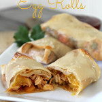Chicken Mango Egg Roll