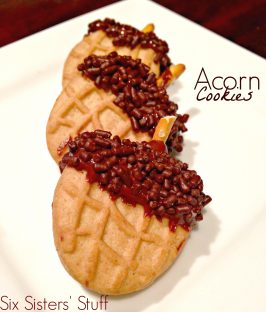 Acorn Cookies and Smart Cookie Book Review