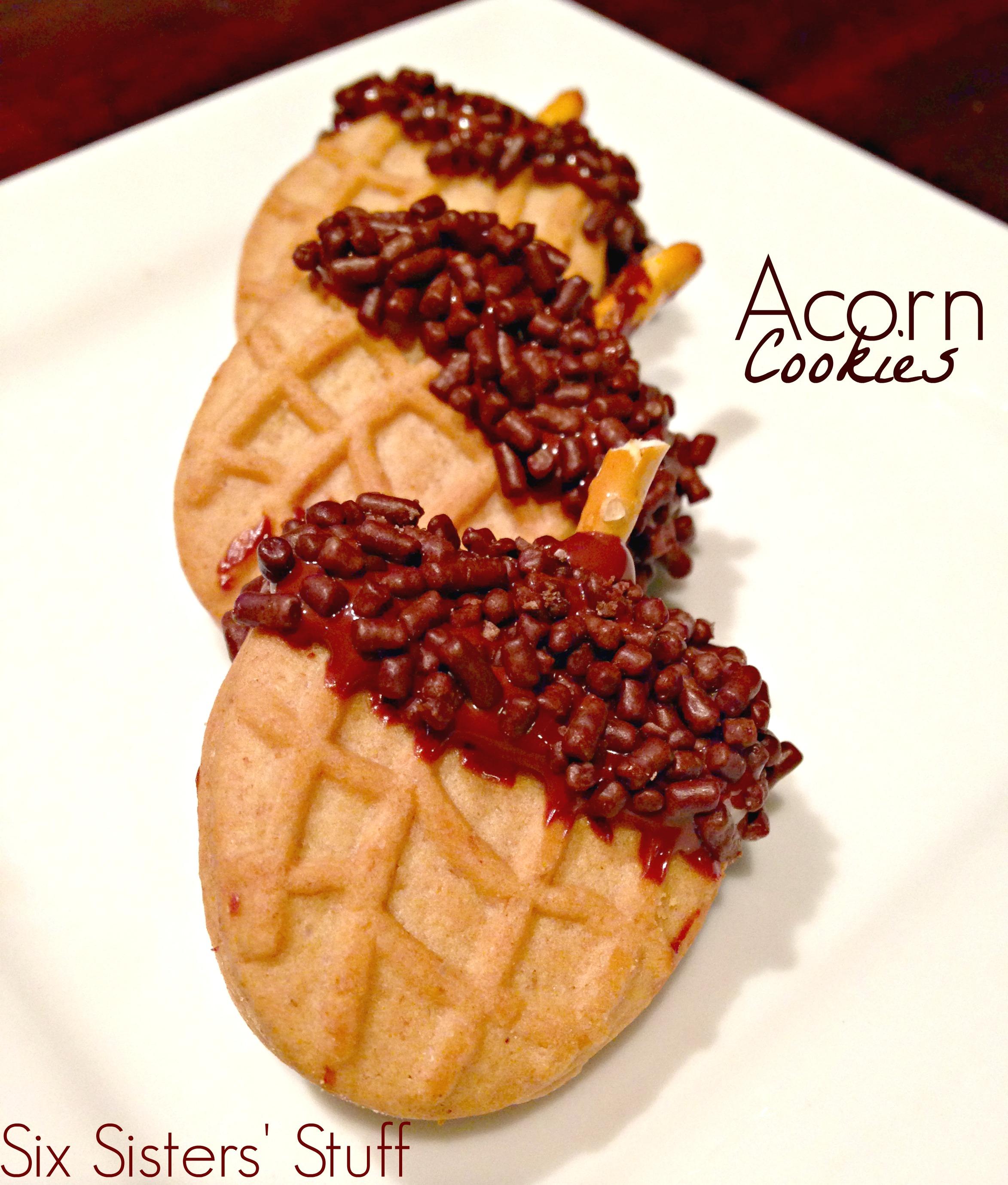 acorn 1