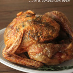 how-to-cook-a-turkey-in-a-convection-oven