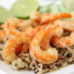 Shrimp3