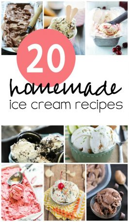 20 Homemade Ice Cream Recipes