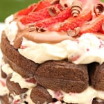 Chocolate Strawberry Waffle Cake