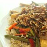 slow cooker teriyaki pork roast