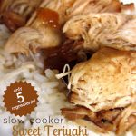 Slow Cooker Sweet Teriyaki Chicken