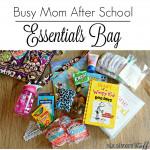 Moms Bag 5