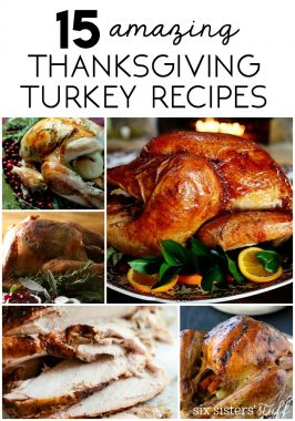 15 Delicious Thanksgiving Turkey Recipes