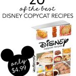 20 of the BEST Disney Copycat Recipes on SixSistersStuff.com