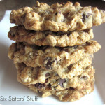 Low Fat Chewy Chocolate Chip Cookies