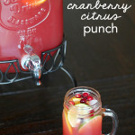 Cranberry Citrus Punch on SixSistersStuff.com