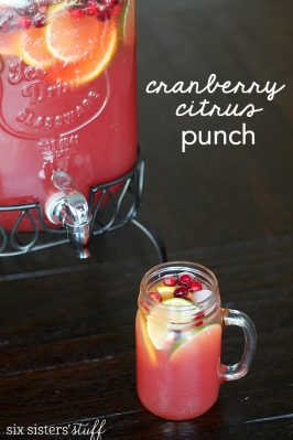 Cranberry Citrus Party Punch Recipe
