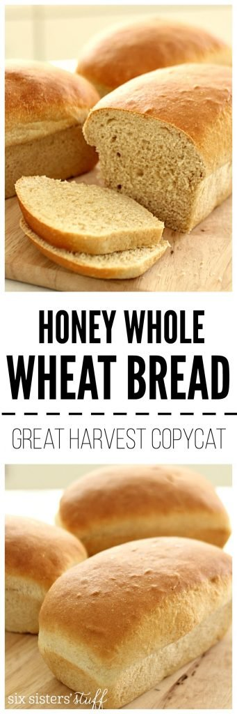 Homemade Honey Whole Wheat Bread Great Harvest Copycat on SixSistersStuff