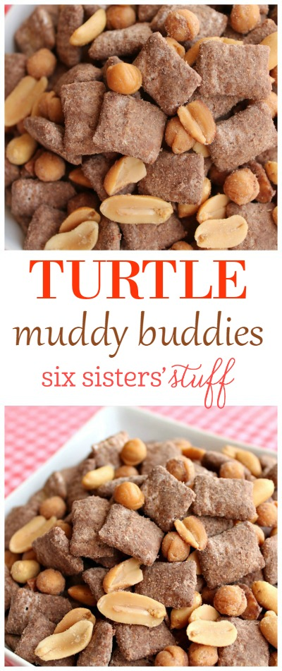 Turtle Muddy Buddies 2