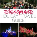 Disneyland Holiday Travel Guide