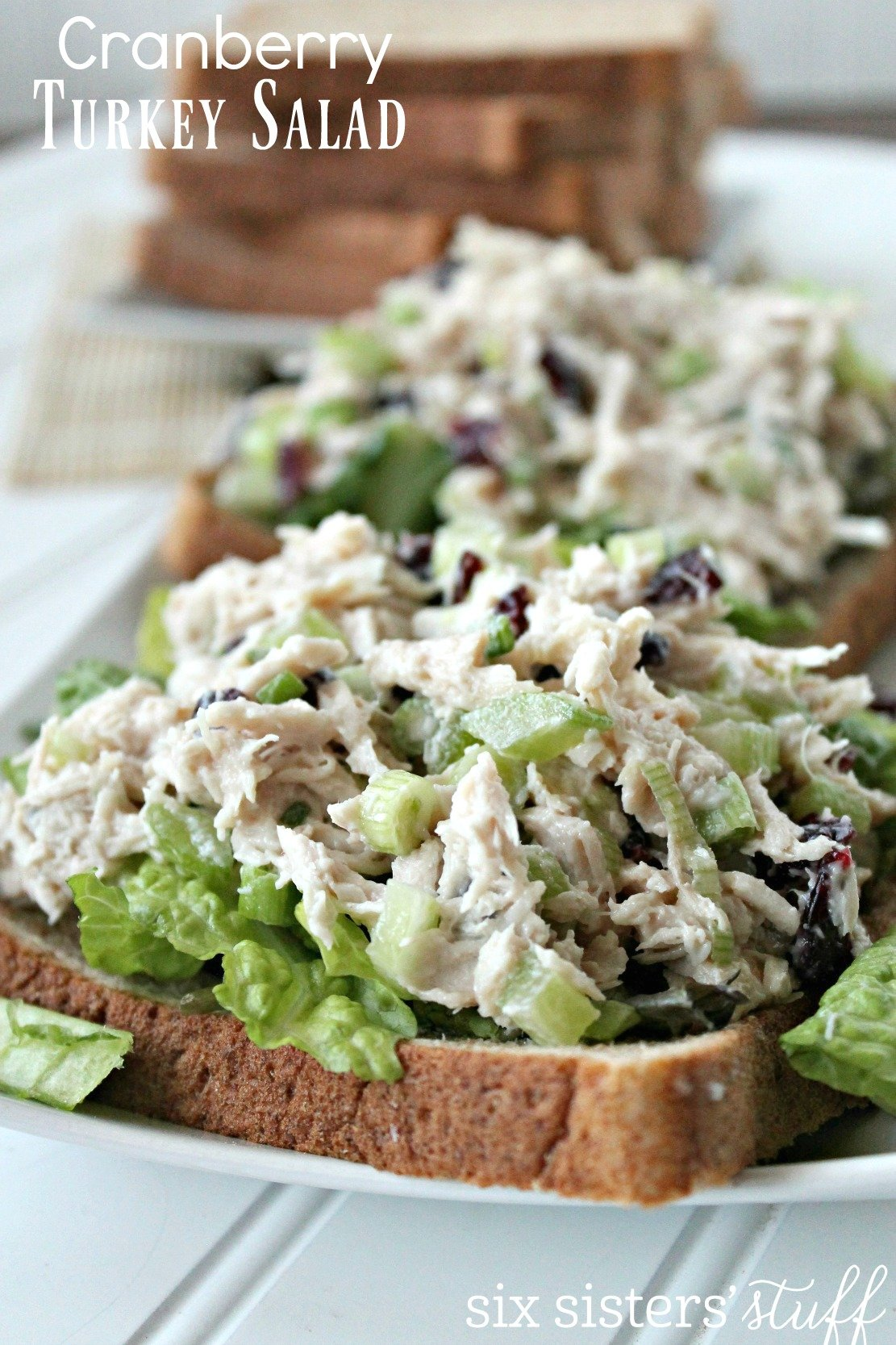 Cranberry Turkey Salad Recipe