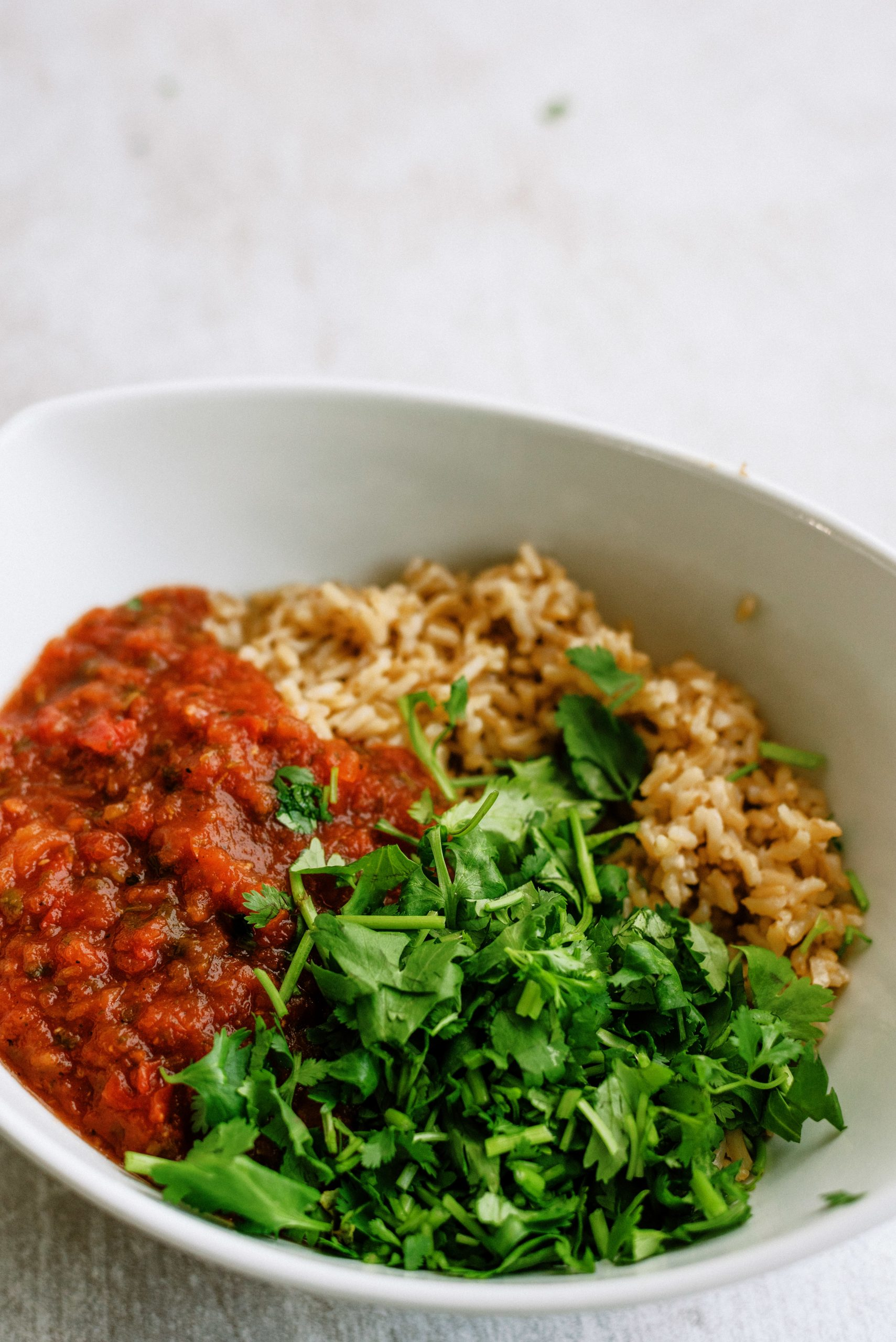 Rice and Salsa mixture with ingredients in a white bowl