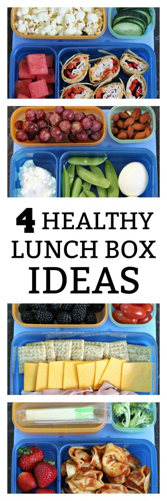 4 Healthy Lunch Box Ideas from SixSistersStuff