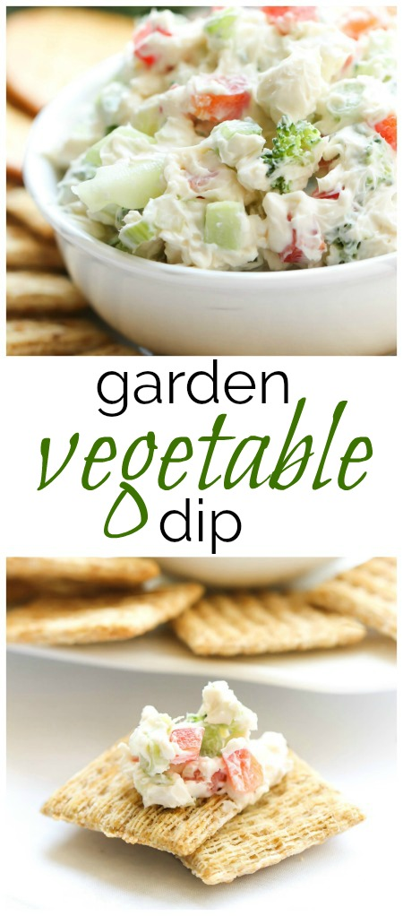 Garden Vegetable Dip 4