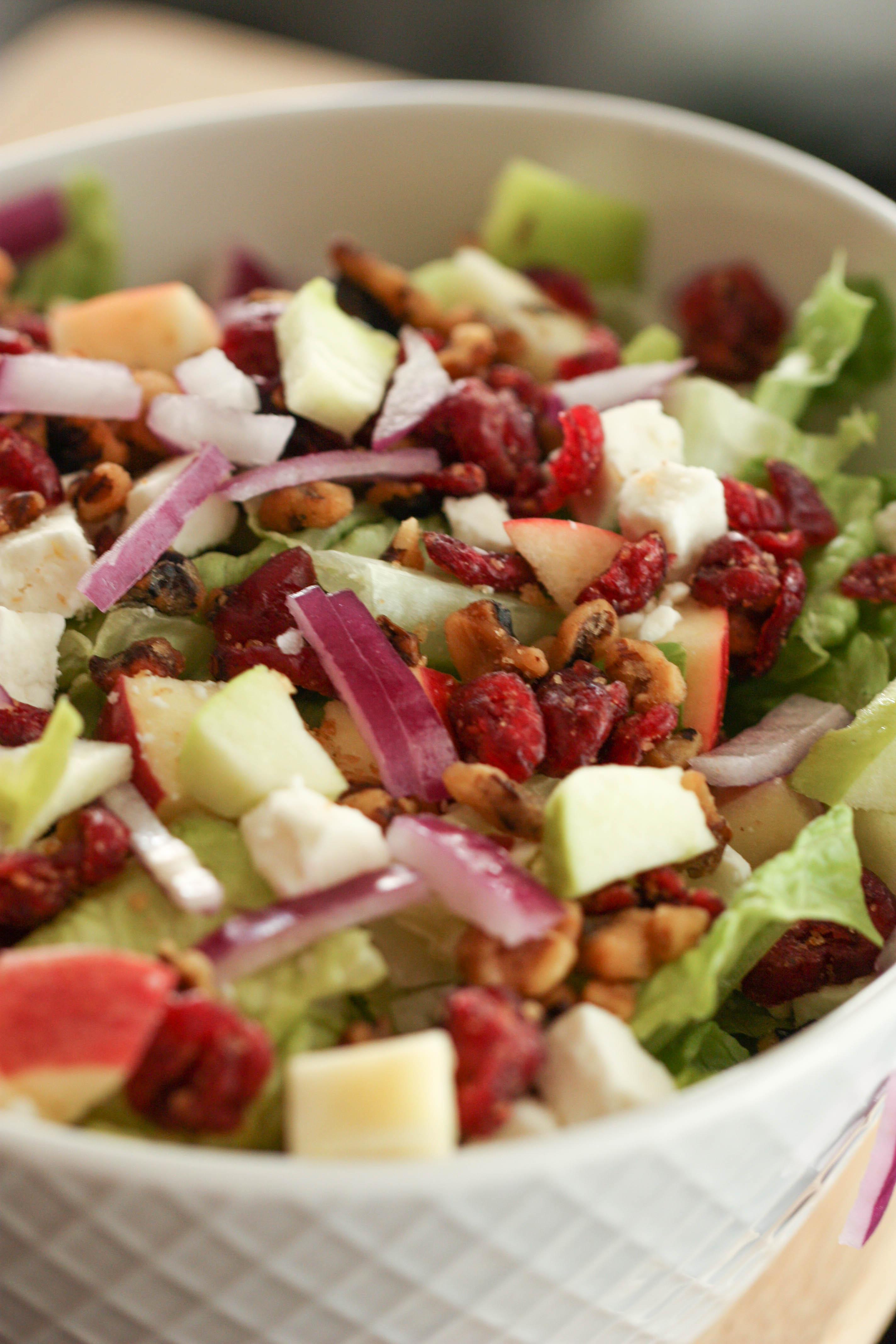 Winter Cranberry Apple Salad