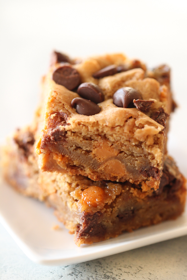 Butterscotch Chocolate Chip Blondies