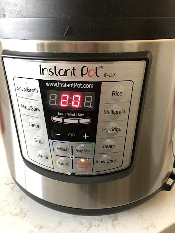 instant pot timer set for 20 minutes