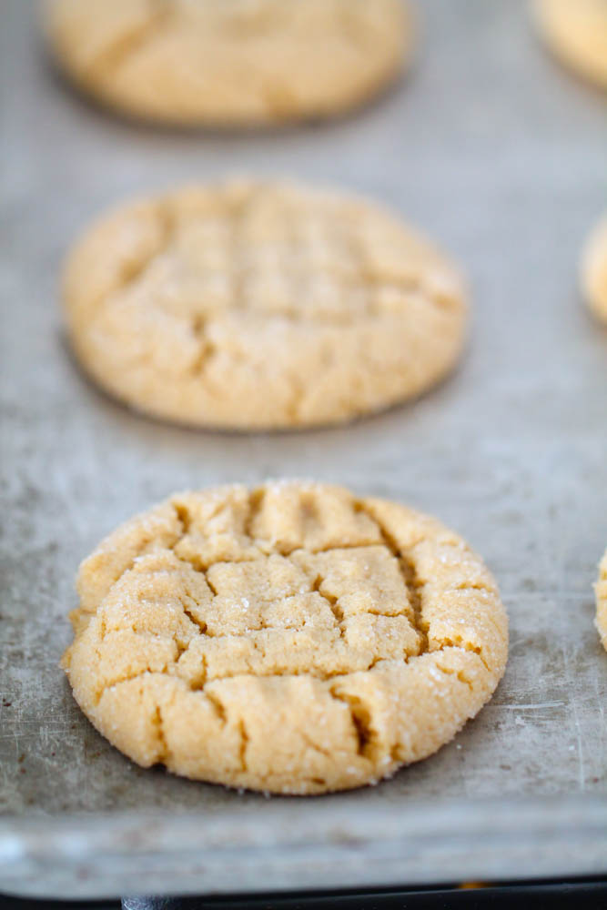 Perfect Peanut Butter Cookies on a baking sheet