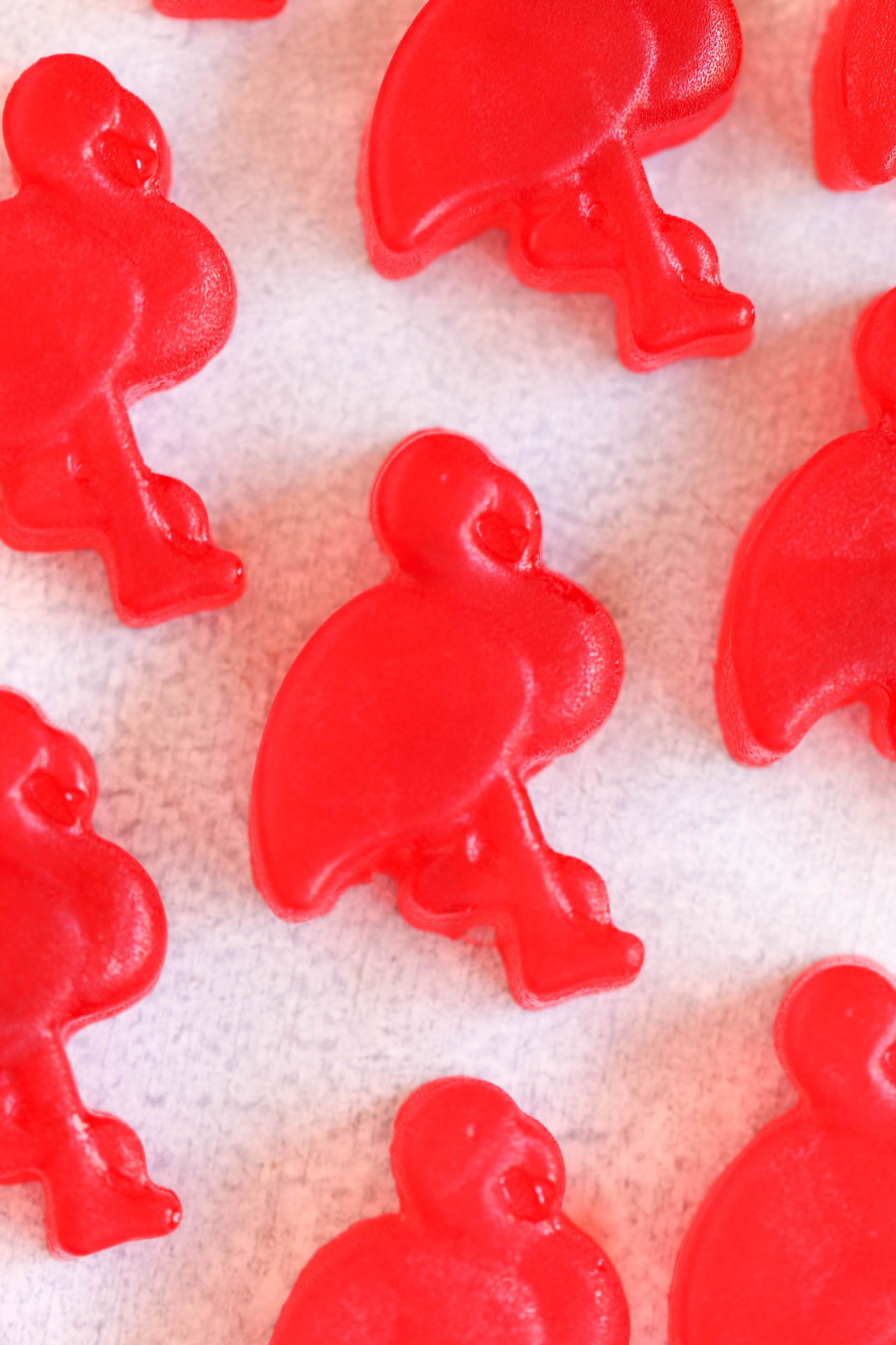Homemade Jello Flamingo Fruit Snacks