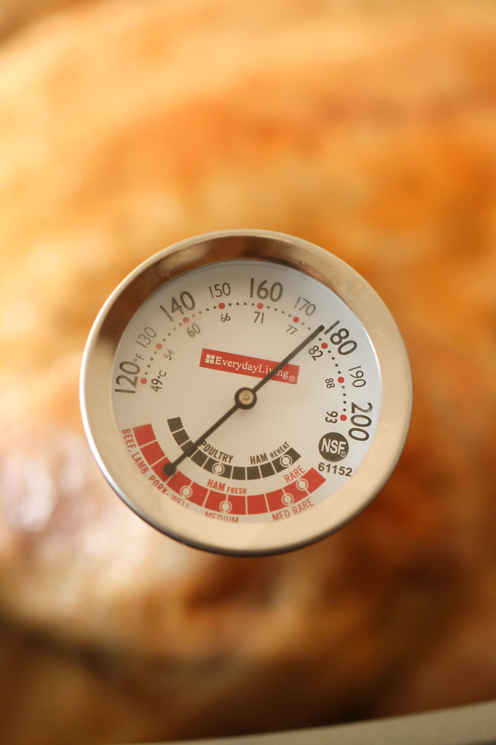 Turkey with meat thermometer showing 175 degrees on six sisters stuff