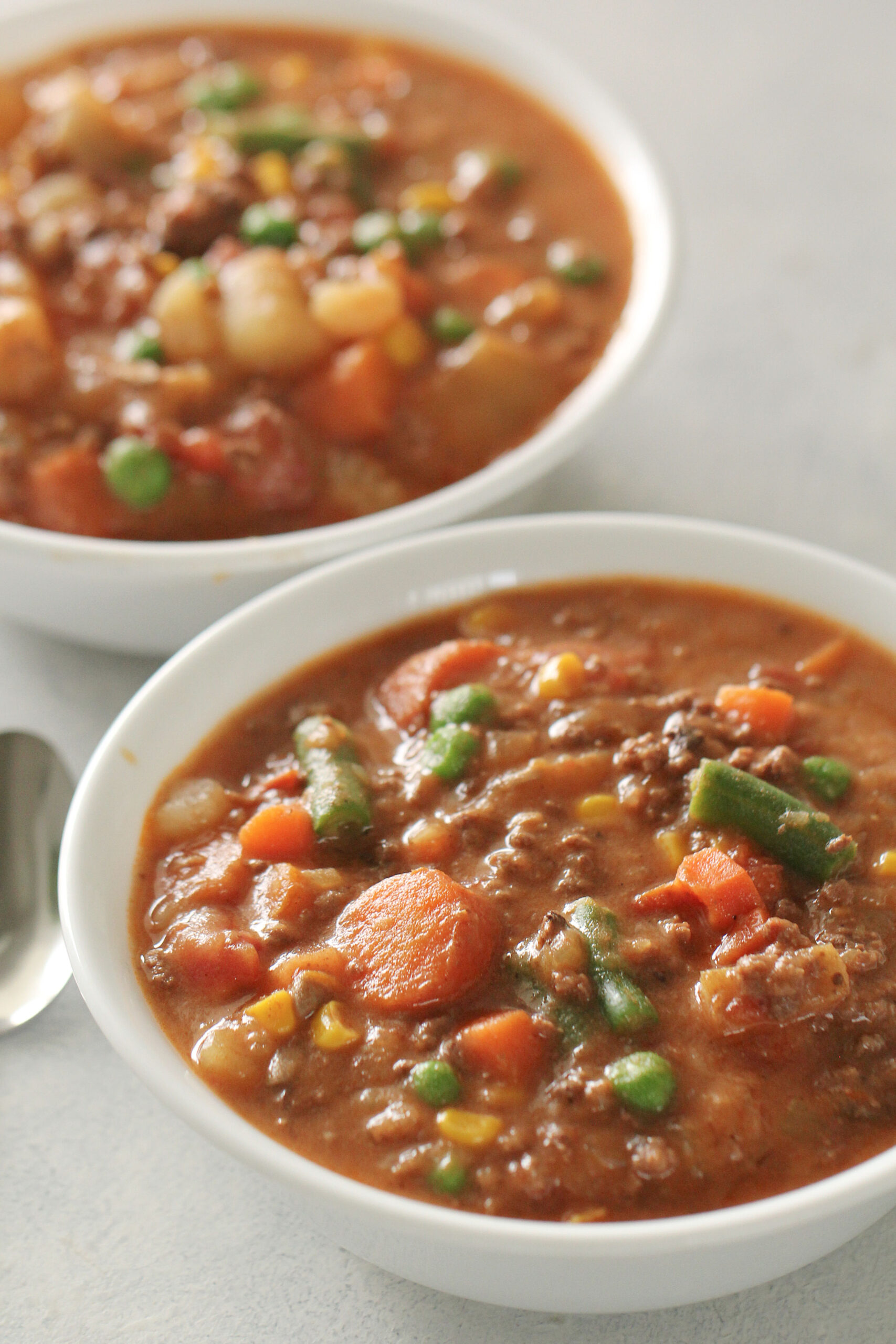 Instant Pot Ground Beef Vegetable Stew Recipe