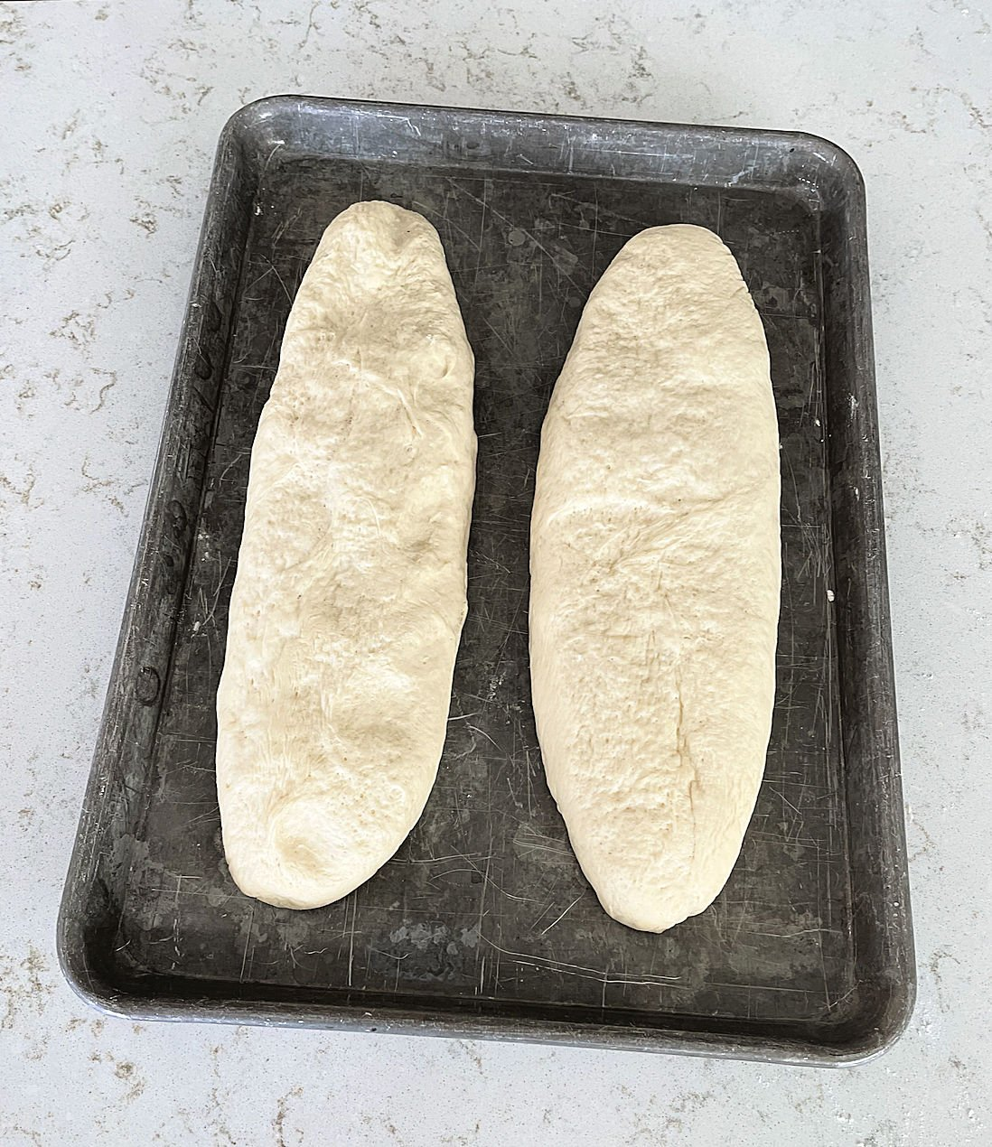 dough shaped into 2 loaves on a cooking sheet