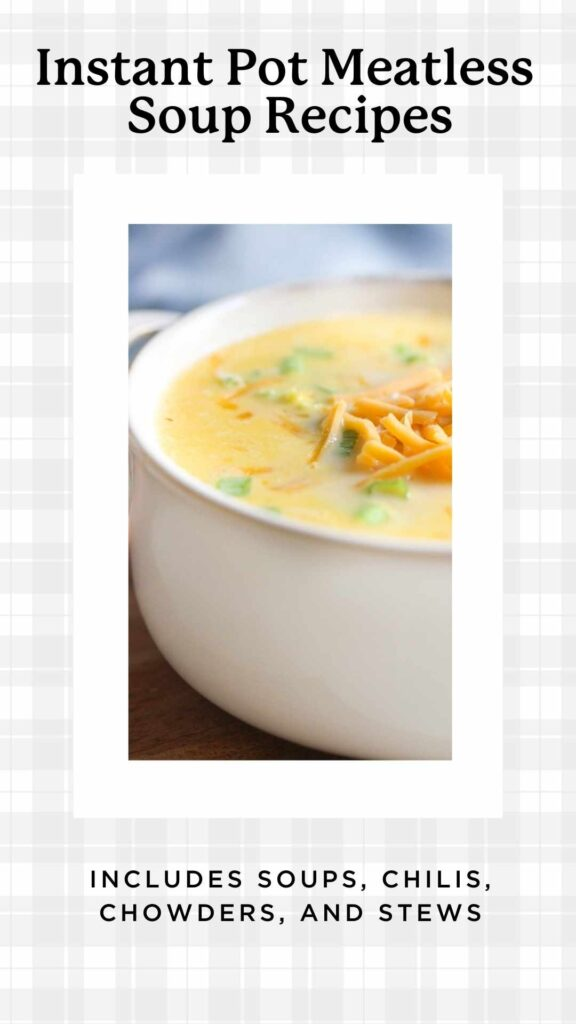bowl of cheese soup mad without meat in the Instant Pot
