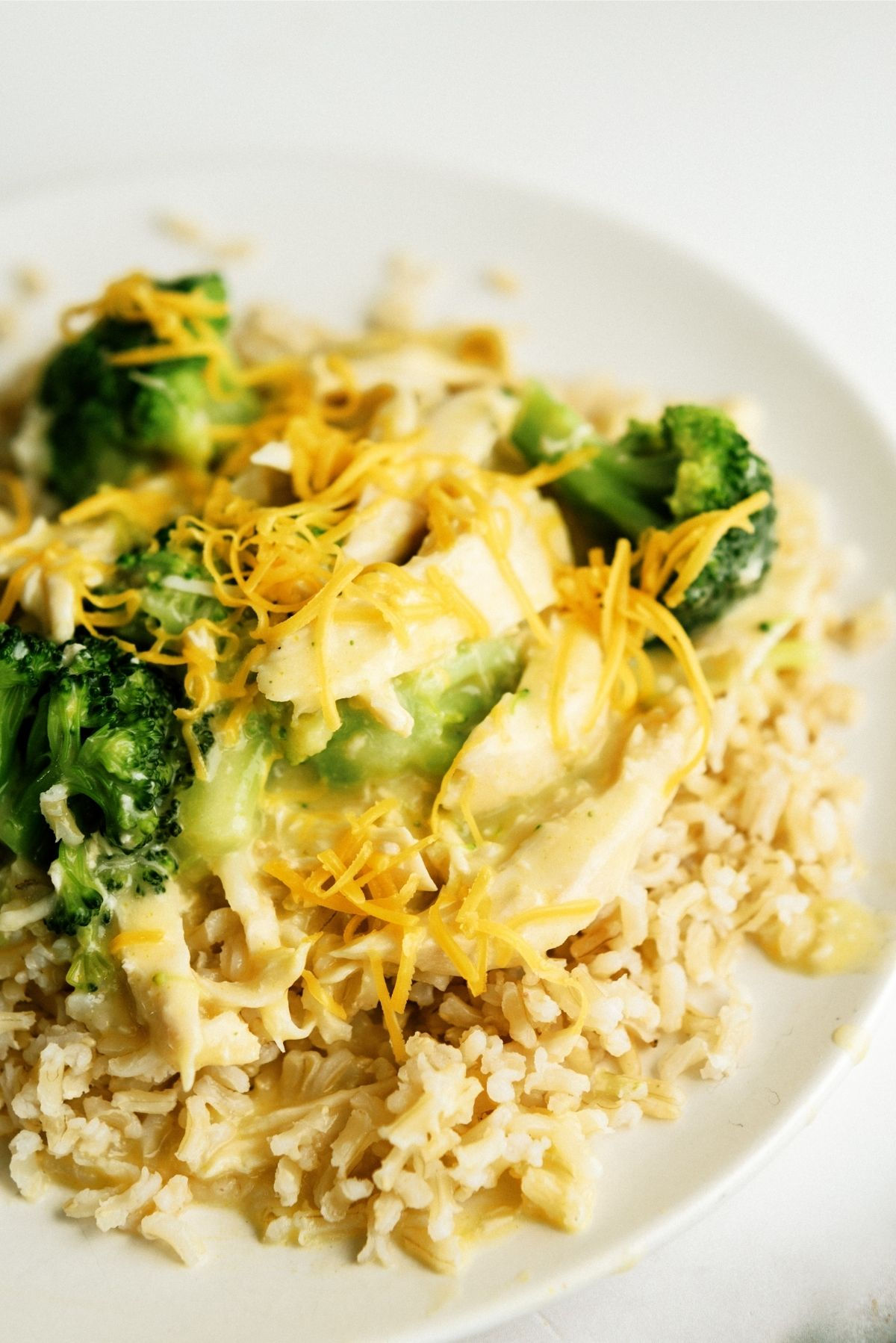 Slow Cooker Chicken and Broccoli Over Rice on a white plate topped with cheese