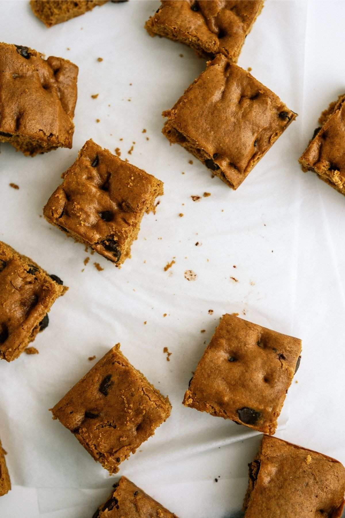 Pumpkin Chocolate Chip Brownies cut into squares